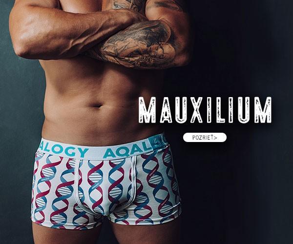 Mauxilium